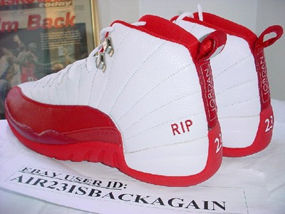 Nike Air Jordan 12 PE Richard Hamilton